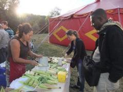 Internationales Saatguttreffen in Périgueux, Frankreich
